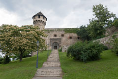 Buda castle entrance and Mace tower stock photo