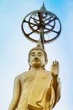 Buda de Golded Imagem de Stock Royalty Free