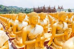 Buda de oro en el parque conmemorativo de Buda Fotografía de archivo libre de regalías