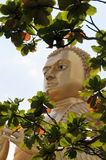 Buda de oro en el templo de oro Foto de archivo libre de regalías
