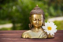 Buda de oro y flor blanca del aster La escultura de Buda del chino y la dalia blanca florecen en fondo natural del verde de la fa Fotografía de archivo