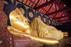 Buda de reclinação do sono da Buda em Wat Chedi Luang em Chiang Mai Imagem de Stock