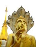 Buda do santuário Imagem de Stock Royalty Free