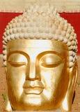 Buda face Royalty Free Stock Photos