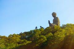 Buda gigante no por do sol Imagem de Stock