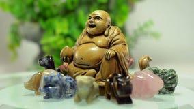 Buda giratorio rodeó 12 animales metrajes