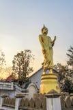 Buda grande de oro en la montaña Wat Phra That Khao Noi Fotos de archivo libres de regalías