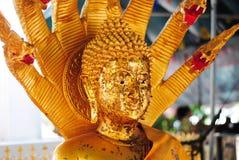 Buda hace frente Foto de archivo libre de regalías