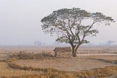 Buda Myanmar Fotografia Royalty Free