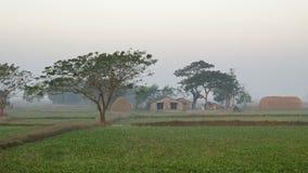 Buda Myanmar Zdjęcie Royalty Free