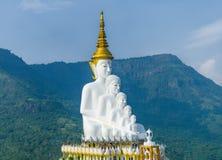 Buda na montanha Fotografia de Stock Royalty Free