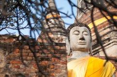 Buda no templo de Wat Yai Chaimongkol Ayutthaya, Tailândia Fotografia de Stock Royalty Free