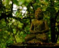 Buda pequena entre as árvores fotografia de stock royalty free
