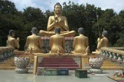 Buda. Profissionais de Phnom. Homem poderoso de Kompong. Camboja Fotografia de Stock Royalty Free