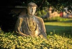 Buda Satue Royalty Free Stock Photos