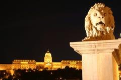 Buda Schloss nachts Lizenzfreie Stockfotografie