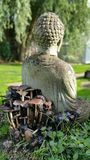 Buda sitting on toadstools. A beautiful garden with stone buda sitting next to growing toadstools Stock Images