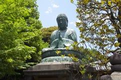 Buda between vegetation Stock Images