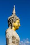 Buda velha Fotografia de Stock
