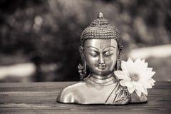 Buda y flor blanca Escultura de Buda del chino y flor blanca de la dalia Imagen de archivo