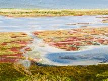 Budaki Lagoon, Shabolat. So-called «Ukrainian Mesopotamia». Stock Photo