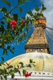 Budanath寺庙Stupa,加德满都,尼泊尔 免版税库存图片