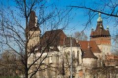 budapest castle Στοκ Εικόνα