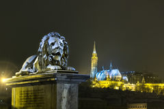 Budapest Chain Bridge Stock Photography