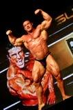 Levantamento do Bodybuilder imagens de stock royalty free