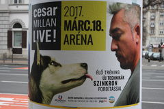 Budapest: feb 1. 2017 - Dog Whisperer with Cesar Millan on board. Stock Photo