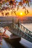 Budapest, Hongrie - ressort à Budapest avec beau Liberty Bridge au-dessus de rivière Danube avec le Soleil Levant et les fleurs d images libres de droits