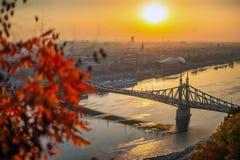 Budapest, Hungary - Autumn foliage with Liberty Bridge at sunrise royalty free stock photo