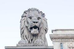 Budapest/Hungary-08 09 18: Lion Statue djur skulpturbro Budapest royaltyfri fotografi