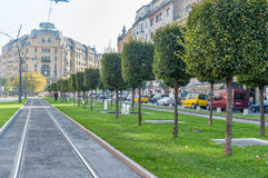 BUDAPEST, HUNGARY - OCTOBER 26, 2015: Tram line in Budapest. People with dog in background. Green area as well in background Royalty Free Stock Image