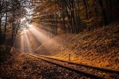 Budapest, Hungary - Rising sun falls on the railroad track leading through the autumn forest. At Huvosvolgy Royalty Free Stock Photo