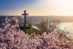 Budapest, Hungary - Spring has arrived in Budapest with beautiful Cherry Blossom and Liberty Bridge. On a sunny morning royalty free stock photo