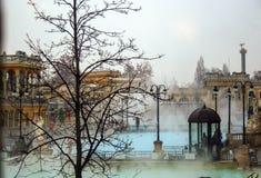 Szechenyi bath royalty free stock photo