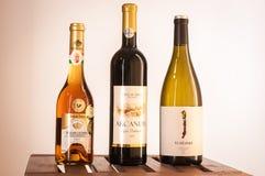 Budapest/Hungria - 01-21-2018: A degustação de vinhos húngara ajustou pouco gosto do vinho de Hungria 3 imagem de stock