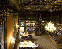 budapest irvin biblioteki szabo Fotografia Royalty Free