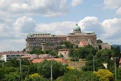 Budapest kunglig slott Royaltyfri Foto
