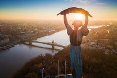 Budapest, l'Ungheria - vista aerea di alba alla statua della libertà con Liberty Bridge e fiume Danubio Fotografia Stock