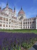 Budapest - le Parlement logent, ont détaillé la vue Photographie stock libre de droits