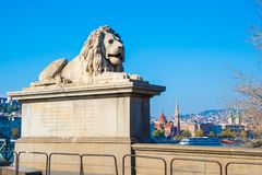 Budapest, lion statue at  the Chain bridge Royalty Free Stock Photography