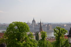 Budapest. Nature tree river picture city Stock Image