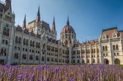 Budapest Parliament Stock Image