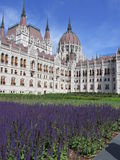 Budapest - Parliament house, detailed view Royalty Free Stock Photography