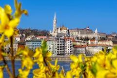 Budapest podczas wiosna czasu w Węgry Obrazy Stock