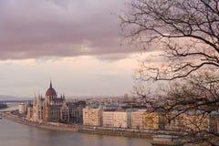 Budapest romantique, Hongrie, en hiver, avec le Parlement et les branches d'arbre nues en vue Photographie stock
