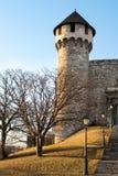 Budapest slotttorn i vinter Arkivfoton