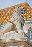 Budapest - staty av lejonet från den St Stephen minnesmärken Arkivbild